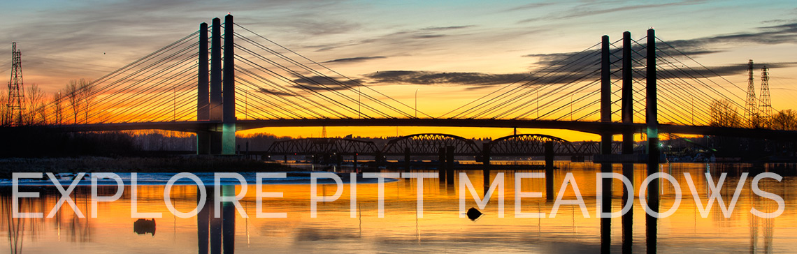 Explore Pitt Meadows Real Estate