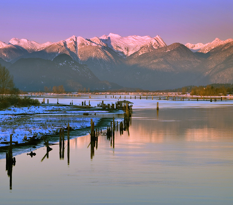 Quite and peaceful - Pitt Meadows B.C.